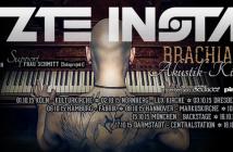 Letzte Instanz Brachial Leise Tour 2015